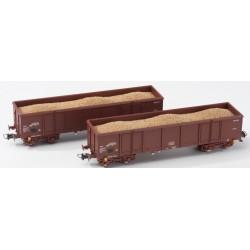 """B-MODELS set de 2 wagons bâchés """"Rils""""  GREEN CARGO"""